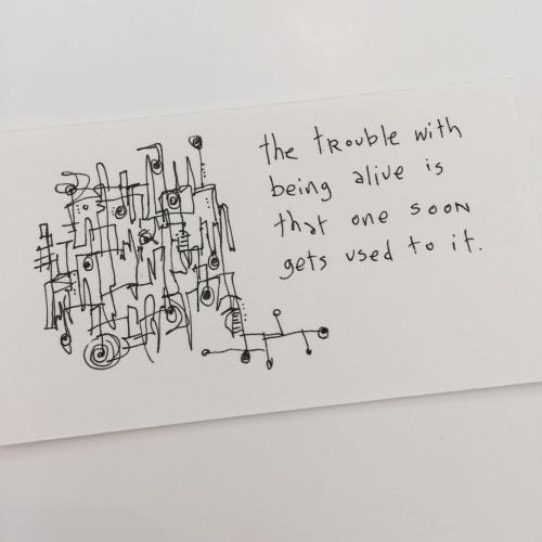 151006